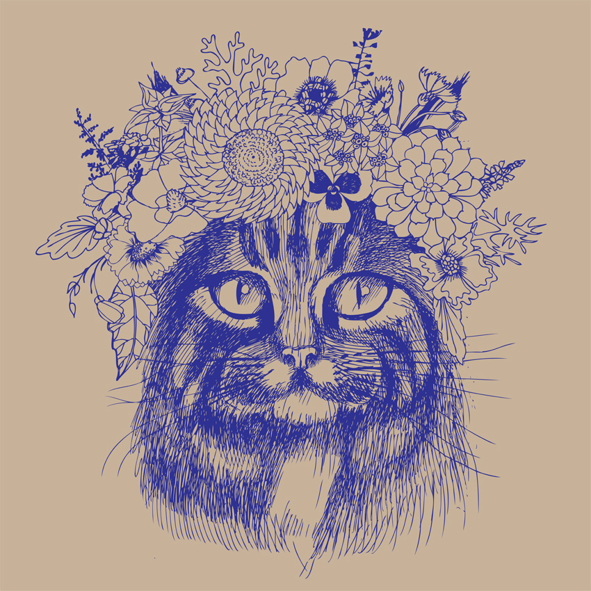Cat Flowers_Feature