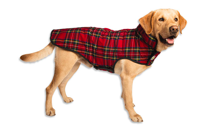 red-plaid-dog-jacket
