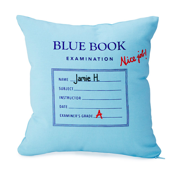 blue-book-pillow